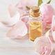 7 Health Benefits Of Catnip Essential Oil